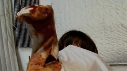 alien la scène de l'explosion de poitrine suédée par des enfants