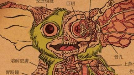 L'anatomie d'un Mogway