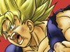 Dragon Ball Tome 22 Perfect Edition