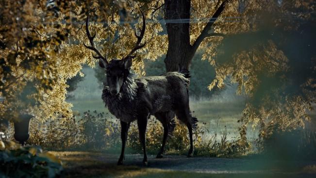 cerf figure métaphore Hannibal