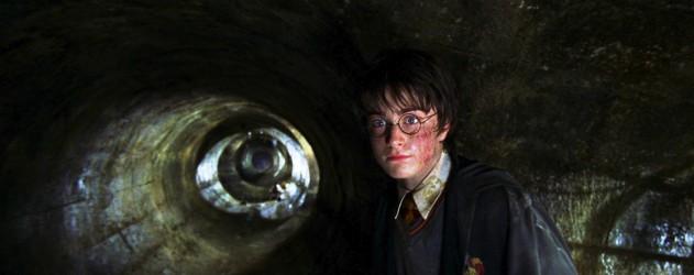 Harry Potter Et La Chambre Des Secrets  Tout Ce Qui Va Mal  Brain