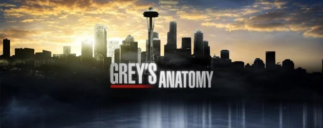 Grey's Anatomy Saison 10 : Extrait de I Bet It Stung (spoilers) - Une