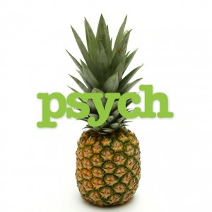 psych_album_cover_by_nonamepaper-d5bhlpx