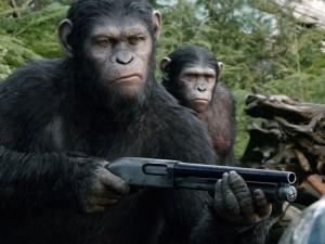 C'est qui que tu traites de singe?