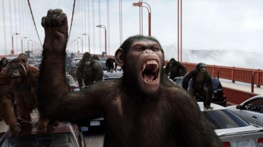 La-suite-de-La-planete-des-singes-les-origines-perd-son-realisateur_portrait_w532