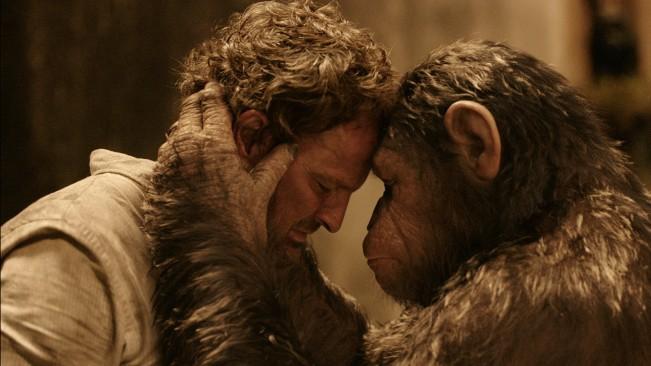 planete des singes koba et césar affrontement critique paix
