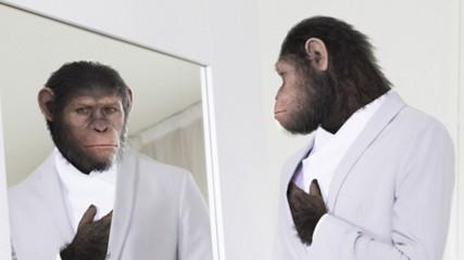 Mode version La planète des singes