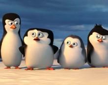Pingouins de madagascar une