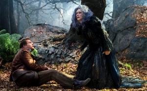 into-the-woods-promenons-nous-dans-les-bois-conte-musical-sombre-boulanger-sorcière