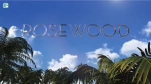 Rosewood_595_Mini Logo TV white - Gallery