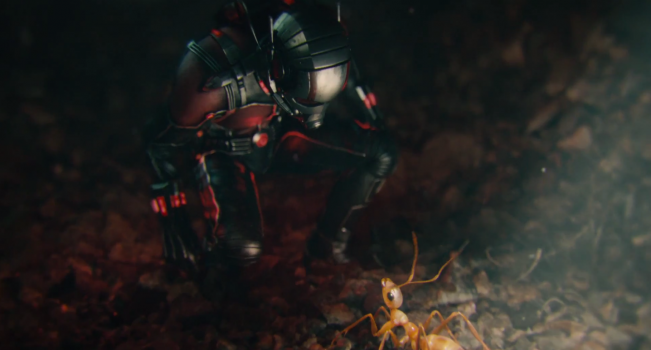 ant-man illus3