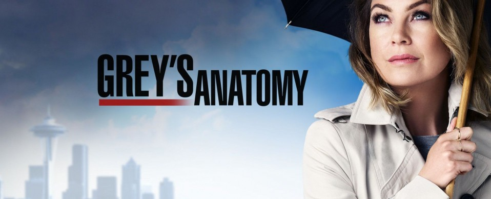 greys anatomy saison 12 bilan critique brain damaged image une