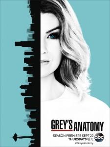 greys-anatomy-saison-13-affiche
