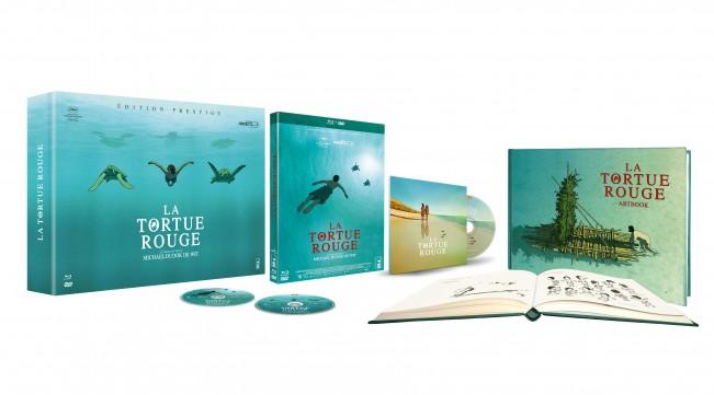 LaTortueRouge-Prestige-Scéno