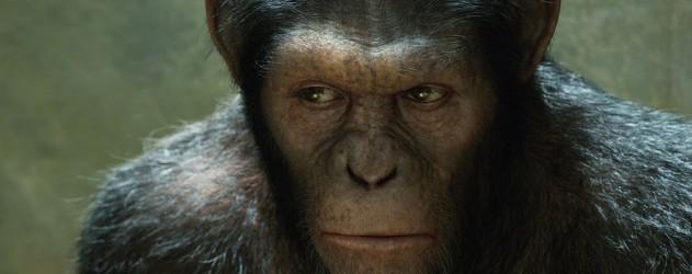 La-planète-des-singes-3-suprematie-en-realite-virtuelle-oculus-rift