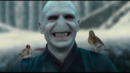 la-belle-et-la-bete-le-mash-up-harry-potter-avec-voldemort-une