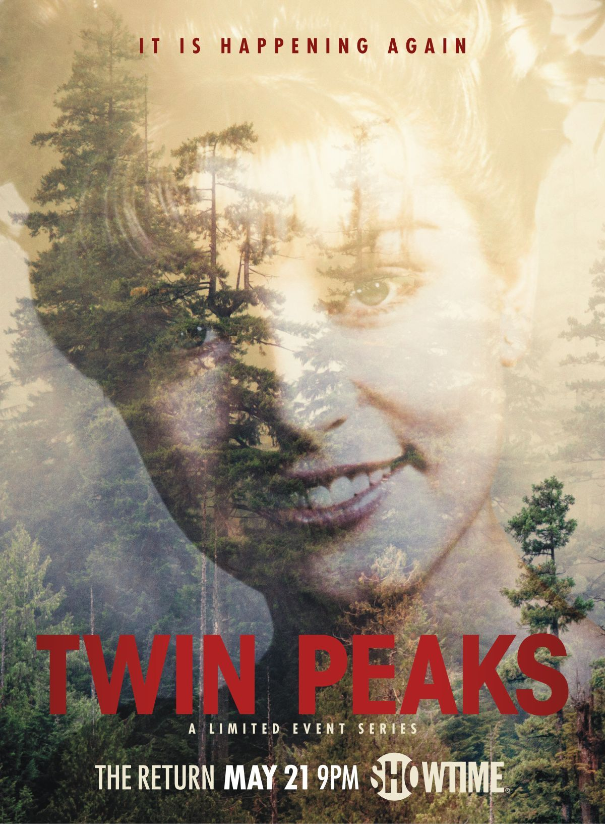 twin-peaks-saison-3-2-affiches-devoilees-palmer
