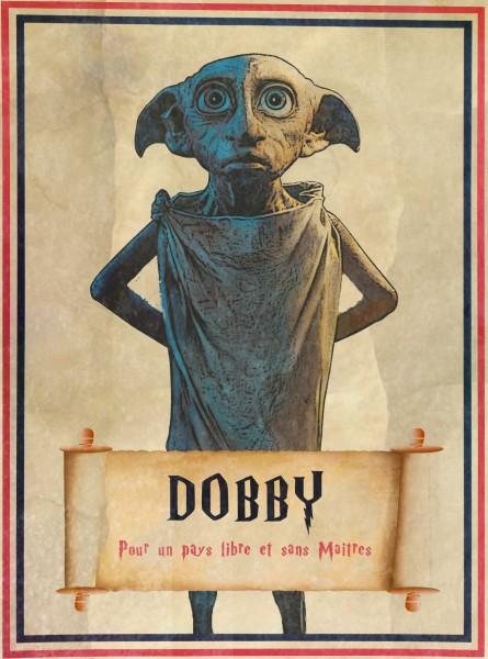 Brain-Présidentielle-affiche-Dobby