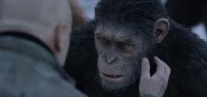 la planete des singes 3 suprématie critique image 3