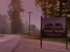 Pourquoi Twin Peaks est-elle une série culte?